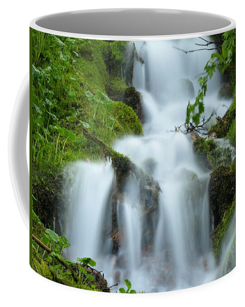 Water Coffee Mug featuring the photograph The Slithering Mist by DeeLon Merritt
