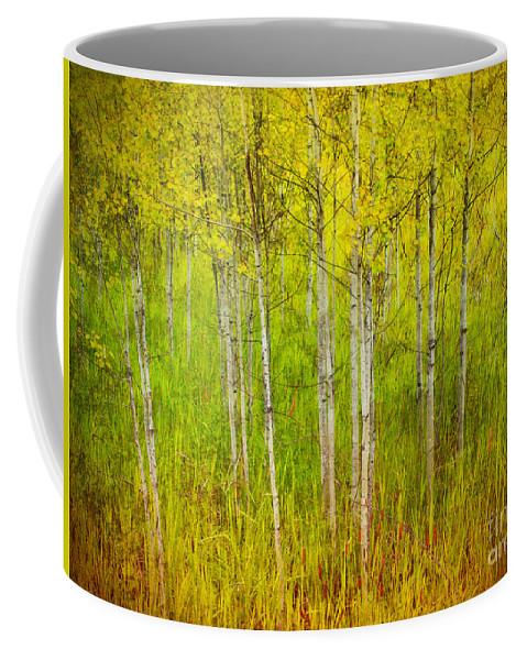 Forest Coffee Mug featuring the photograph The Small Forest by Tara Turner