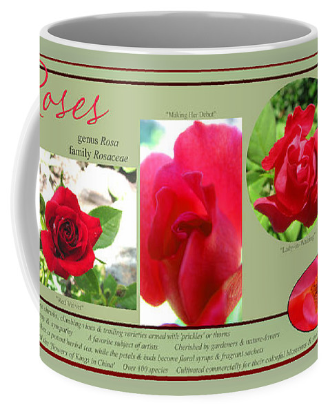 Roses Coffee Mug featuring the photograph The Subject Is Roses by Brooks Garten Hauschild
