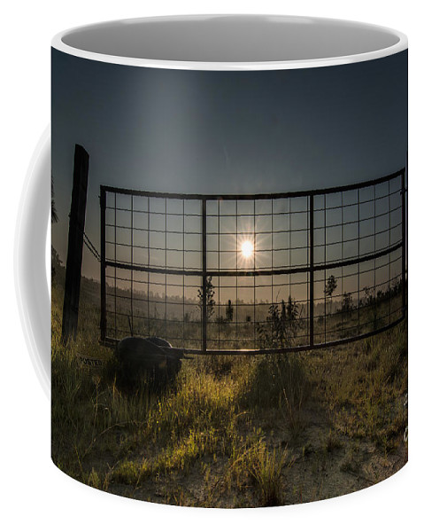 Sun Coffee Mug featuring the photograph The Sun Is Free by James Hennis