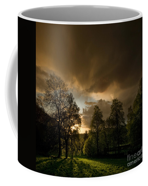Sunset Coffee Mug featuring the photograph The Sunset Behind My Fence by Angel Ciesniarska