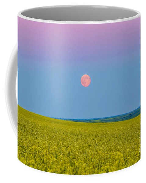 Alberta Coffee Mug featuring the photograph The Supermoon Rising Above A Canola by Alan Dyer
