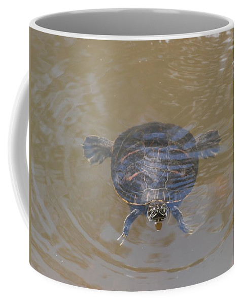 Water Coffee Mug featuring the photograph The Swimming Turtle by Rob Hans