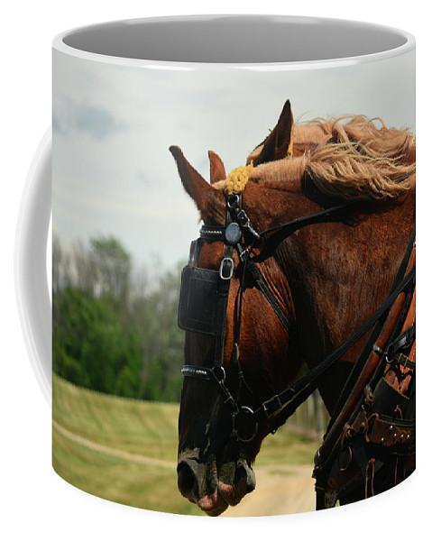 Michigan Coffee Mug featuring the photograph The Team by Linda Kerkau