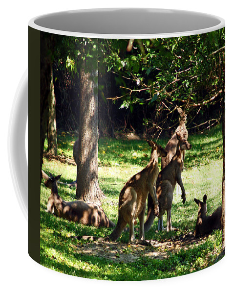 Fine Art Photography Coffee Mug featuring the photograph The Three Musketeers by Patricia Griffin Brett