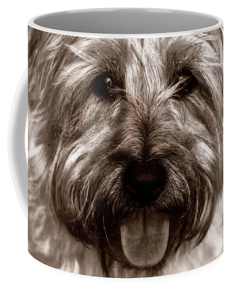 Toto Coffee Mug featuring the photograph The Toto by Lynn Sprowl