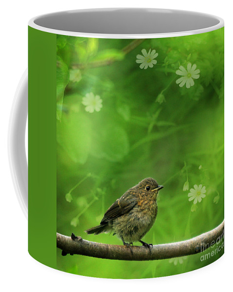 Robin Coffee Mug featuring the photograph The Touch Of The Spring by Angel Ciesniarska