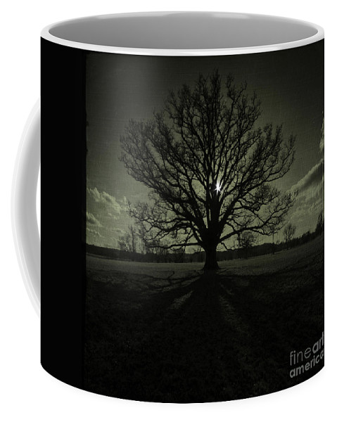 Tree Coffee Mug featuring the photograph The Tree by Angel Ciesniarska