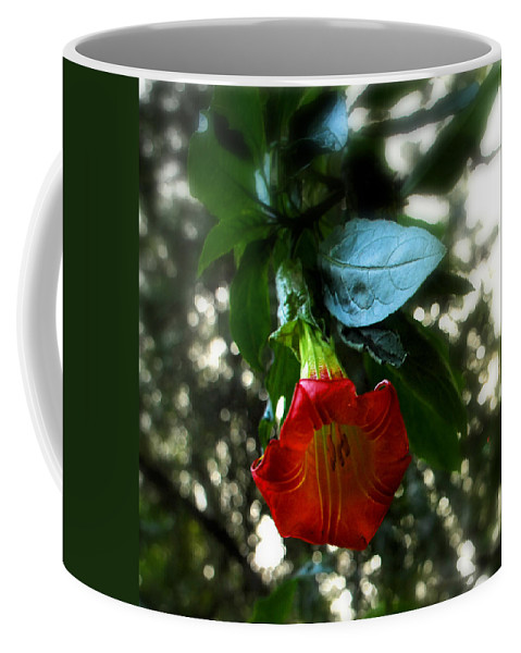 Flower Coffee Mug featuring the photograph The Trumpet Sounded by Donna Blackhall