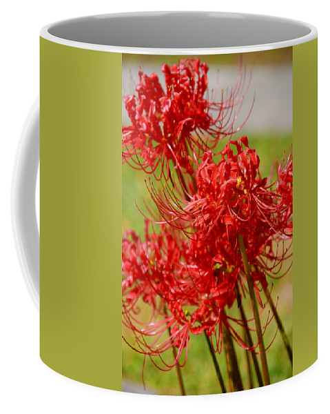 Photography Coffee Mug featuring the photograph The Virgins by Susanne Van Hulst