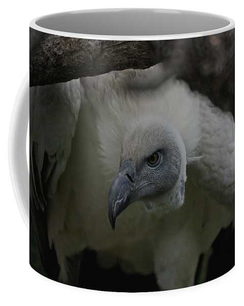Animals Coffee Mug featuring the photograph The Vulture Dry Brushed by Ernie Echols