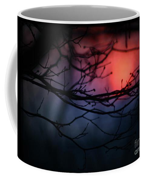 Sunset Coffee Mug featuring the photograph The Warm Light by Angel Tarantella