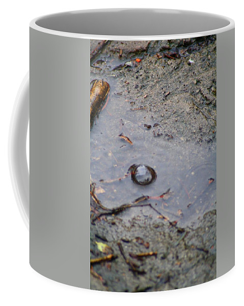 Water Coffee Mug featuring the photograph The Water Bubble by John W Smith III