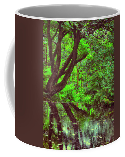 Still Water Coffee Mug featuring the photograph The Water Margins - Nutclough Woods by Philip Openshaw
