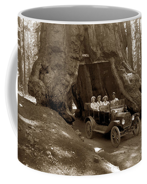 The Wawona Tunnel Tree Coffee Mug featuring the photograph The Wawona Tree Mariposa Grove, Yosemite Circa 1916 by California Views Archives Mr Pat Hathaway Archives