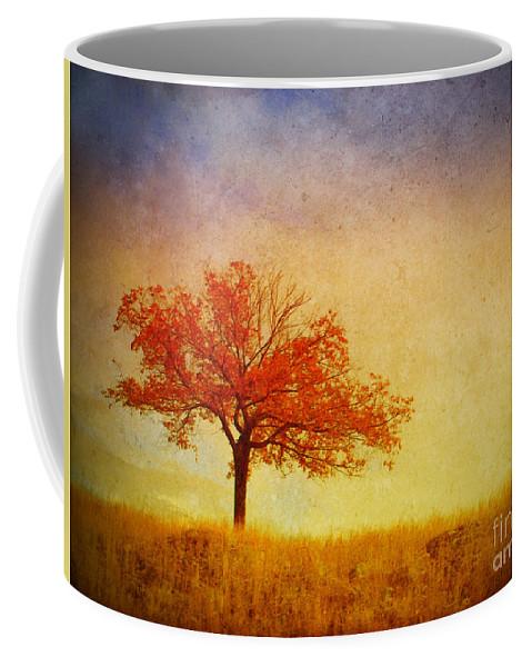 Tree Coffee Mug featuring the photograph The Wednesday Tree by Tara Turner