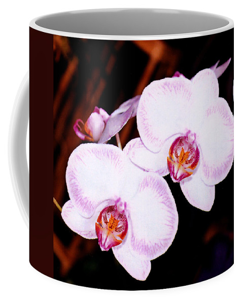 Nature Coffee Mug featuring the photograph The White Twins by Susanne Van Hulst