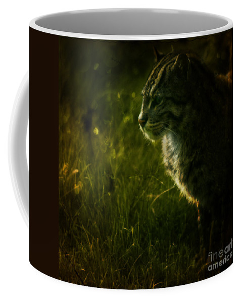 Zoo Coffee Mug featuring the photograph The Wild Cat by Angel Ciesniarska