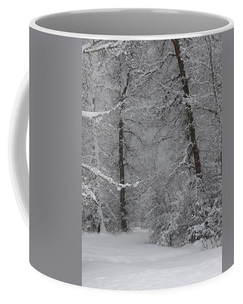 Winter Coffee Mug featuring the photograph The Winter Path by DeeLon Merritt