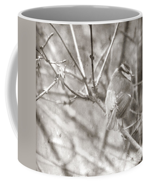 Blue Tit Coffee Mug featuring the photograph The Winter Time by Angel Ciesniarska