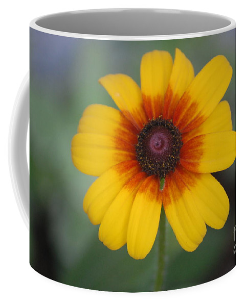 Landscape Coffee Mug featuring the photograph They Call Me Mellow Yellow. by David Lane