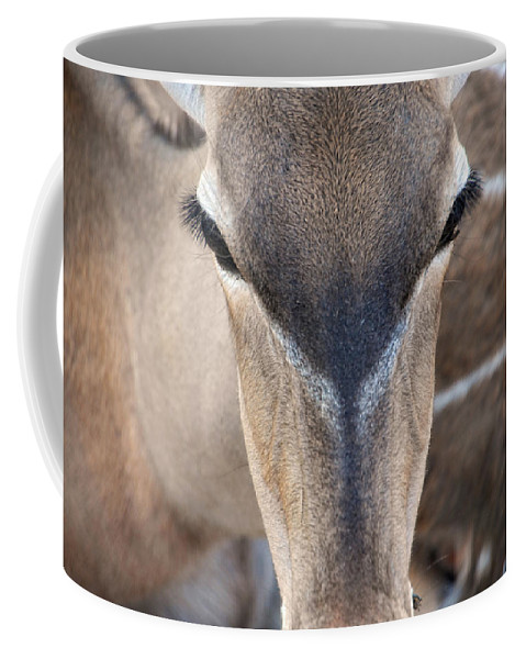 Deer Coffee Mug featuring the photograph Those Eyes by Donna Blackhall