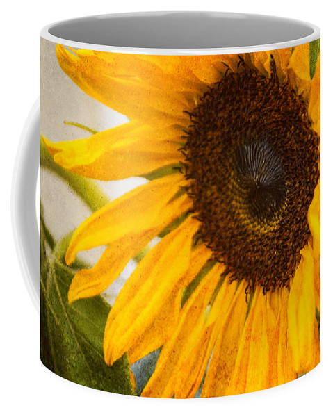 Sunflower Coffee Mug featuring the photograph Thoughts Of Autumn by Arlene Carmel