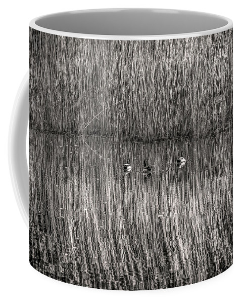 Black And White Coffee Mug featuring the photograph three musketeers BW by Leif Sohlman