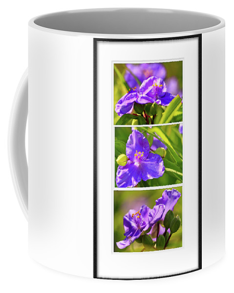 Recent Coffee Mug featuring the photograph Three Photos For The Price Of One by Geraldine Scull