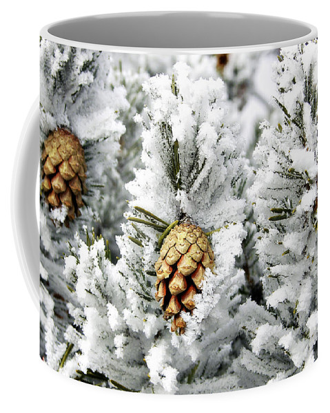 Frosty Coffee Mug featuring the photograph Three Pinecones by Marilyn Hunt
