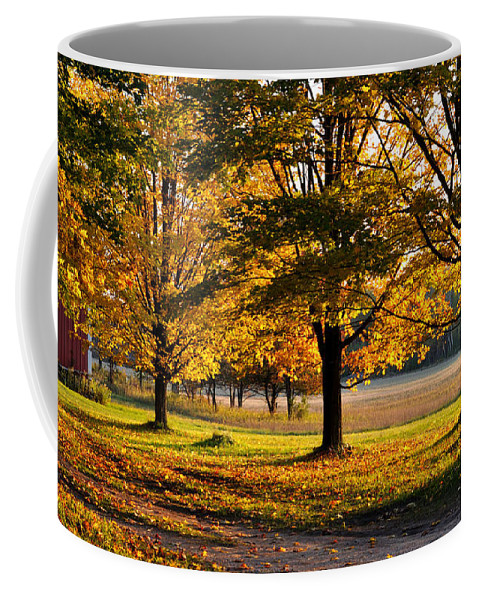 Fall Coffee Mug featuring the photograph Three Sisters by Tim Nyberg