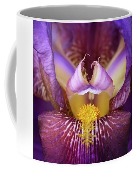Iris Coffee Mug featuring the photograph Throat Of The Iris by Joy Schmitz