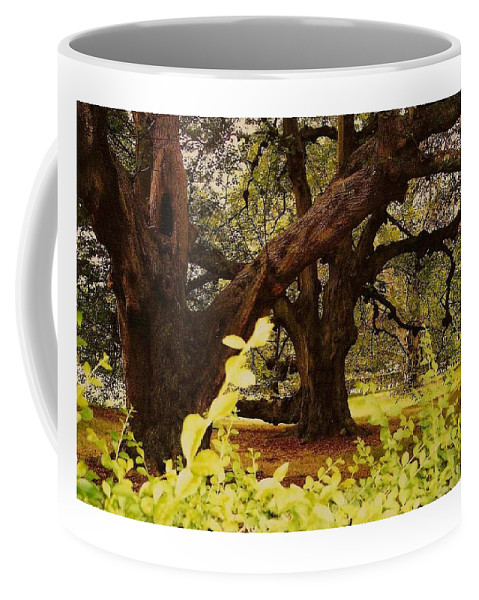 Landscape Coffee Mug featuring the photograph Through The Ages by Mary Wolf