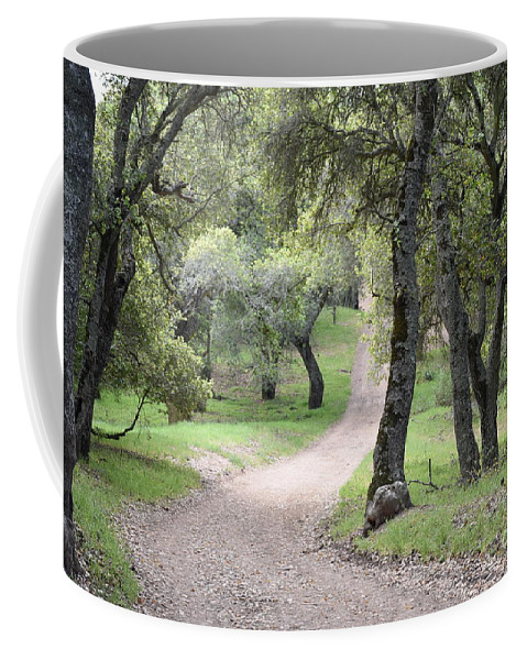 Landscape Coffee Mug featuring the photograph Through The Oaks by Suzanne Leonard