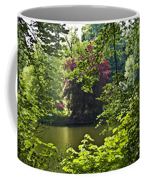 Countryside Coffee Mug featuring the photograph Through The Tree01 by Svetlana Sewell