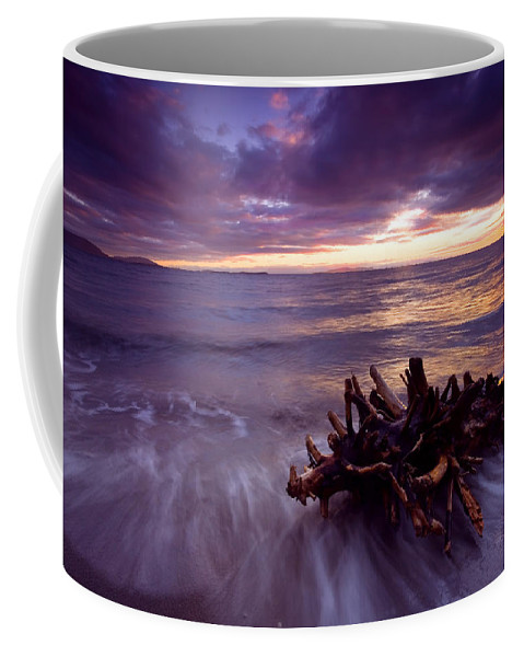 Sunset Coffee Mug featuring the photograph Tide Driven by Mike Dawson