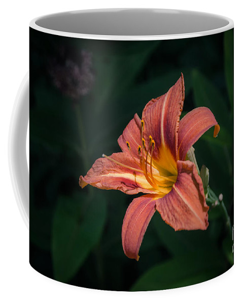 Tiger Lily Coffee Mug featuring the photograph Tiger Lily by Yoko Maria