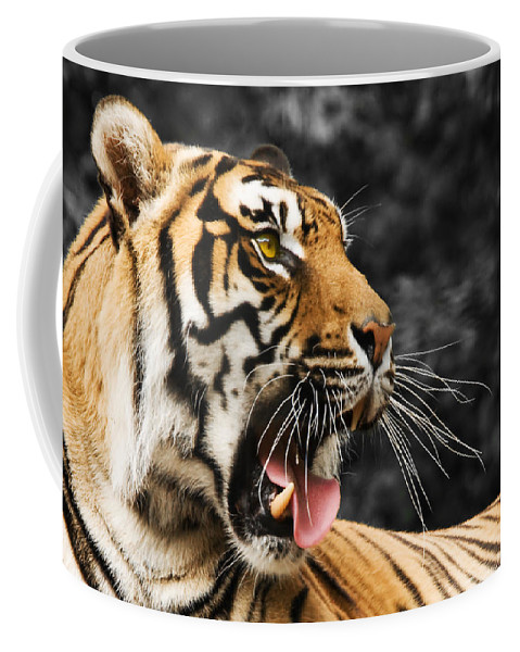 Tiger Coffee Mug featuring the photograph Tiger by Svetlana Sewell