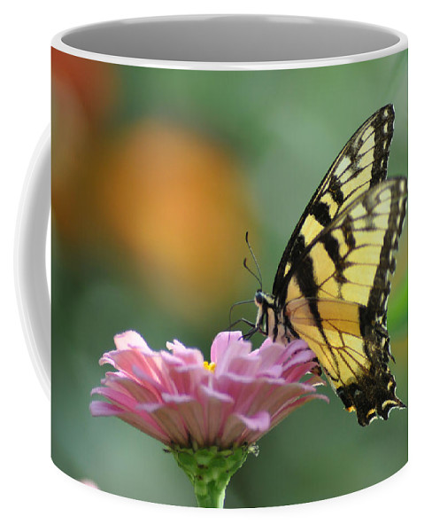 Tiger Swallowtail Coffee Mug featuring the photograph Tiger Swallowtail Butterfly by Bill Cannon