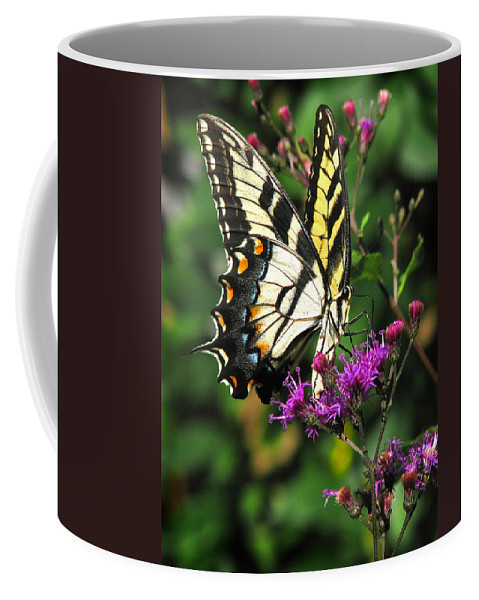 Nature Coffee Mug featuring the photograph Tiger Swallowtail by Peg Urban