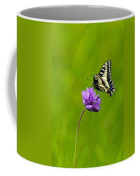 Flora Coffee Mug featuring the photograph Tiger Swallowtail by Randall Ingalls