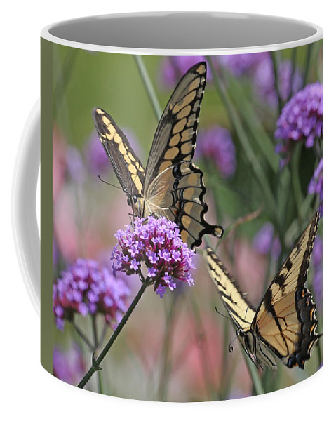 Nature Coffee Mug featuring the photograph Tiger Swallowtails by Mike Dickie