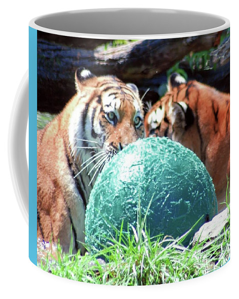 Tiger Coffee Mug featuring the photograph Tigers Playing by Kathleen Struckle