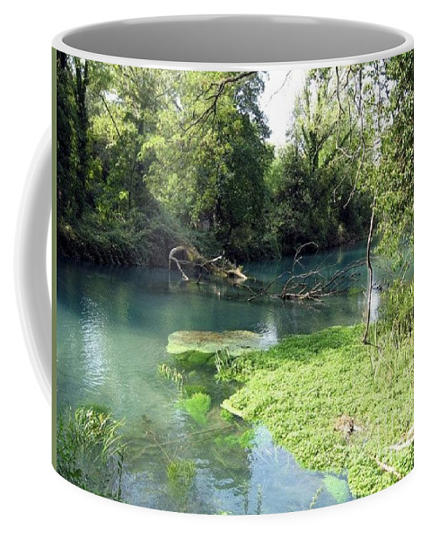 River Coffee Mug featuring the photograph Timava's Spring II by Dragica Micki Fortuna