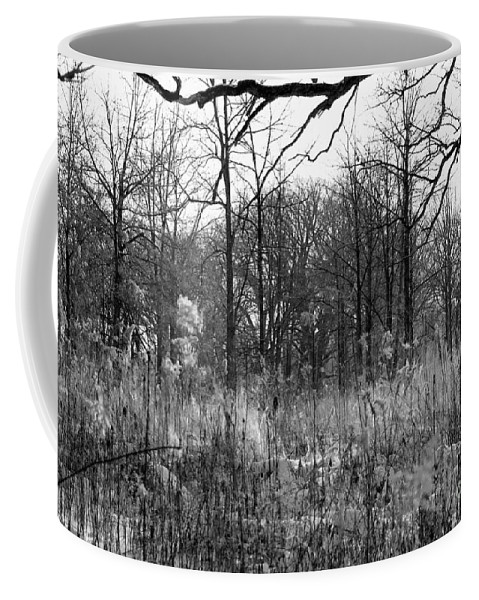 Illinois Coffee Mug featuring the photograph Timberland Infrared No2 by Alan Look