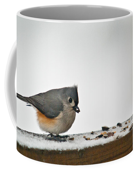 Tufted Coffee Mug featuring the photograph Timouse Eating Seads by Douglas Barnett