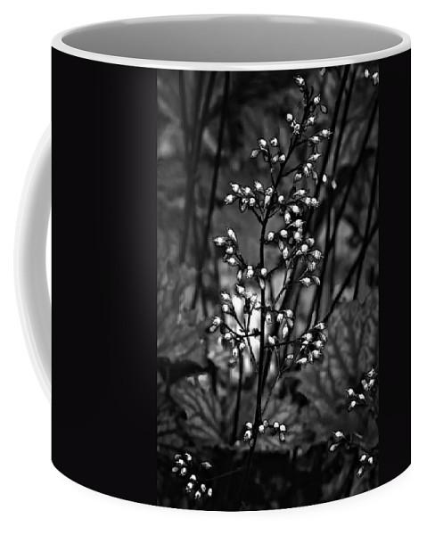 Flower Coffee Mug featuring the photograph Tiny Dancer Bw by Steve Harrington