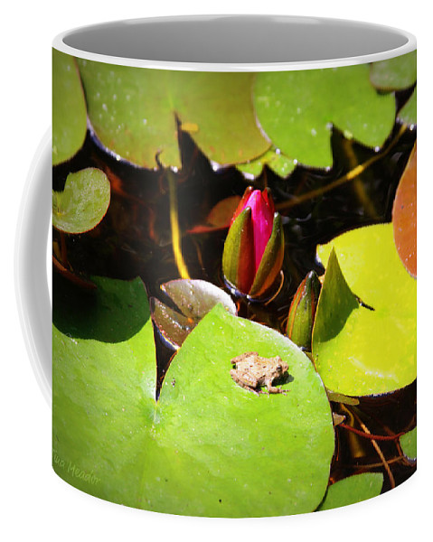 Frog Coffee Mug featuring the photograph Tiny Frog by Tina Meador