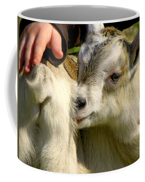 Baby Goats Coffee Mug featuring the photograph Tiny Hands by Karen Wiles