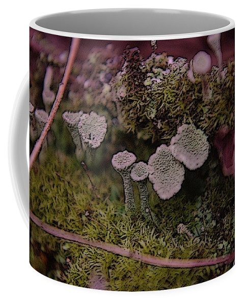 Mushrooms Coffee Mug featuring the photograph Tiny Mushrooms by Jeff Swan